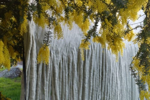 Wall Hangings by Taiana Giefer seen at Roseark, West Hollywood - Seed No.004: Come to My Show