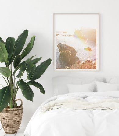 Beach print and plant