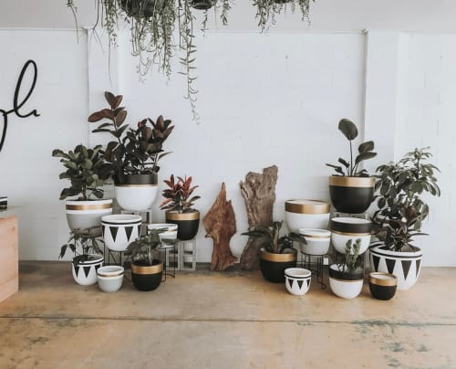 Mowgli Studio - Planters & Vases and Planters & Garden