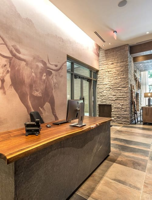 Wallpaper by Organik Creative at Ascent Victory Park Apartments, Dallas - Longhorn Wallcovering
