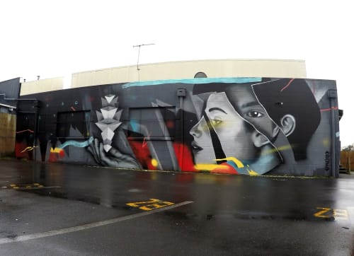 Street Murals by Pauly B seen at 246 Victoria St, Hamilton - Mesoverse
