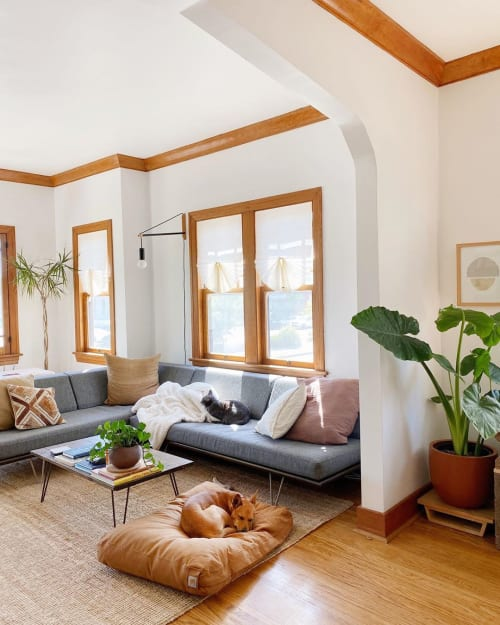 Couches & Sofas by Modernica seen at Kristine Claghorn's Home, Los Angeles - Couches & Sofas