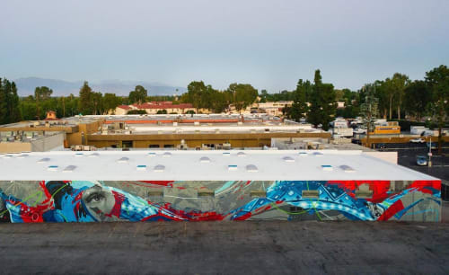 Street Murals by Levi Ponce seen at Tarzana, Los Angeles - Jane