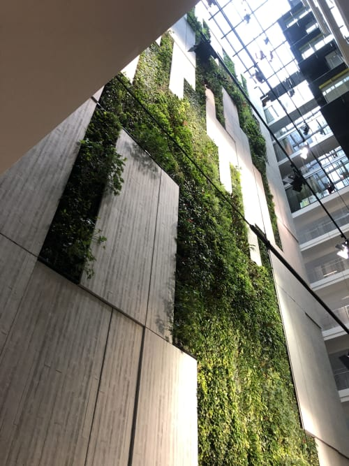 Plants & Landscape by Fytogreen Australia seen at Collins Square, Docklands - Green Wall - Australia's Tallest Indoor Greenwall