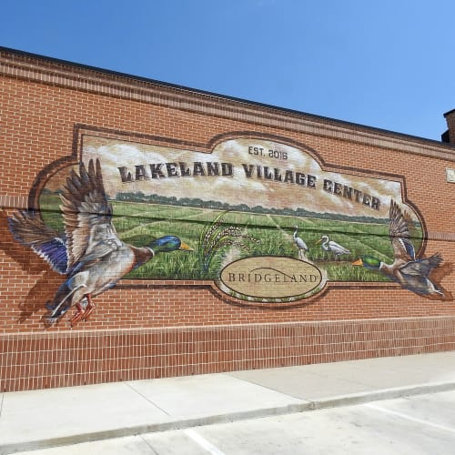 Murals by Anat Ronen seen at Lakeland Village Center, Cypress - Lakeland ducks