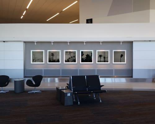 Art & Wall Decor by Vanessa Marsh seen at San Francisco International Airport, San Francisco - Everywhere All at Once