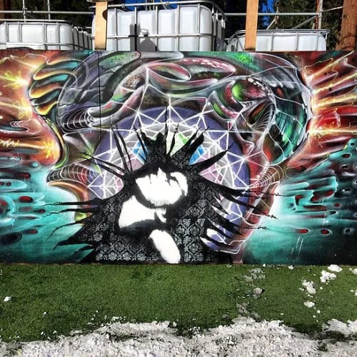 Street Murals by Max Ehrman (Eon75) seen at South Lake Tahoe, South Lake Tahoe - SnowGlobe collab wall