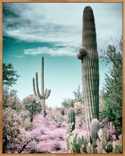 Photography by Kristin  Hart  Studios seen at Tucson, Tucson - TUCSON DESERT - TURQUOISE