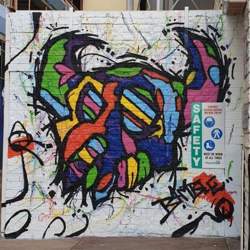 "Murals by Jimmy Bamble seen at West Lane Car Park, Darwin City - ""RUKUS"""