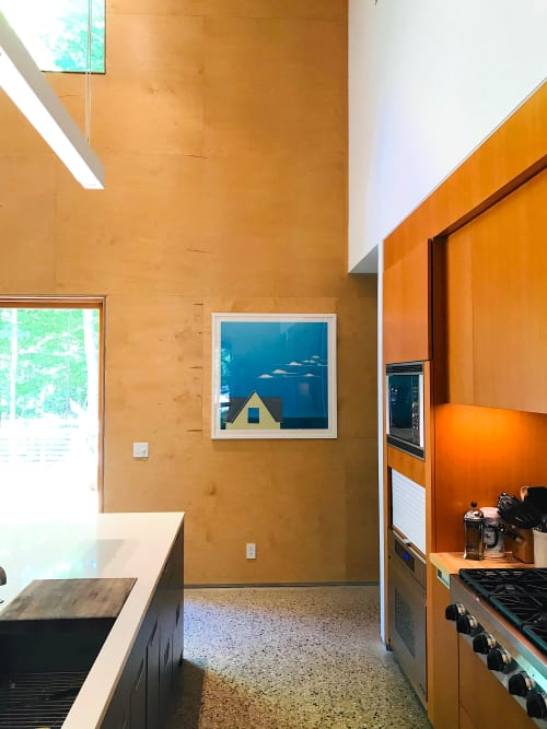 Murals by Paul Pedulla seen at Private Residence, Douglas - Blue Horizon