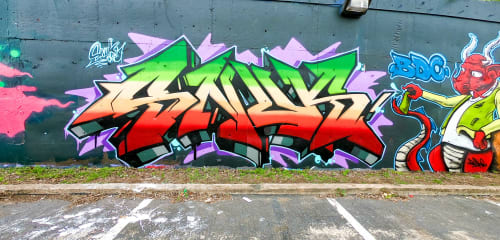 Snuk One - Art and Street Murals