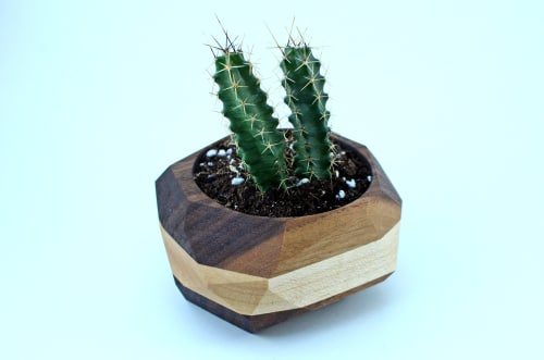Vases & Vessels by THE IRON ROOTS DESIGNS seen at Clients Residence - Portland, OR, Portland - Hardwood Geometric Cactus Planter