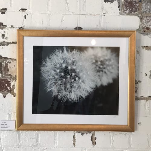 Photography by Steiner Studios Art seen at Sugar Creek Art Center, Thorntown - Make A Wish