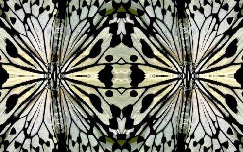Dagmara Weinberg - Photography and Art