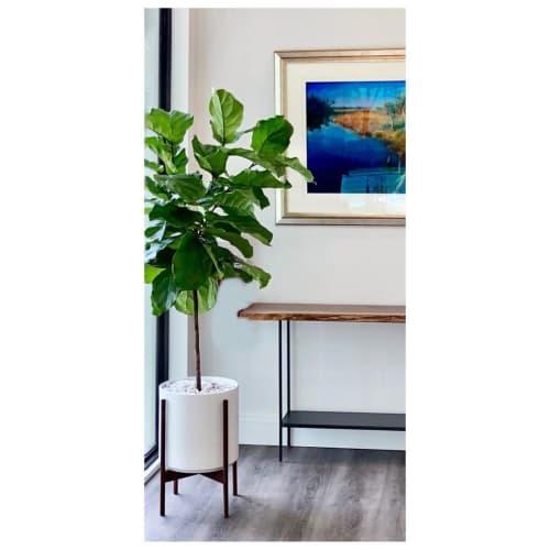 Interior Design by LBE Design seen at Piante Design, Winter Park - The Twelve w/Black Walnut