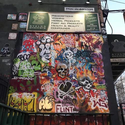 Street Murals by Albertus Joseph seen at Avalon Chemists, New York - Graffiti
