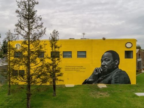 Street Murals by Shawn Michael Warren seen at Charles R. Drew University of Medicine and Science, Los Angeles - King