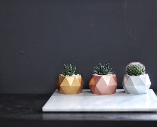 """Plants & Flowers by Mind The Minimal seen at """"Private Residence - Vancouver, BC"""", Vancouver - Sphere Concrete Planter"""