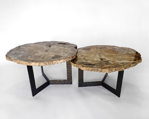 Tables by Ron Dier Design seen at Thomas Lavin Inc, West Hollywood - Petrified wood table with hammered metal base