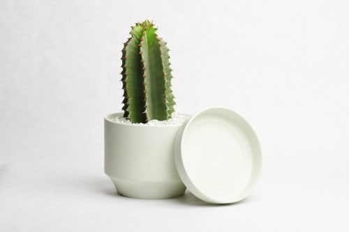Plants & Flowers by LBE Design seen at ReRoot, Denver - Round Two by LBE Design