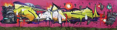 Sleekiez - Murals and Art
