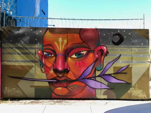 Skore999 - Art and Street Murals