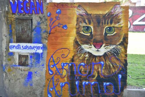 Murals by Nati Salsa seen at Riobamba Y Chacabuco, Rosario - Amor animal