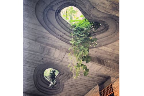 Architecture by DDG Partners seen at 345Meatpacking, New York - Plants Through The Roof