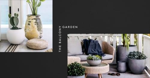 The Balcony Garden - Planters & Vases and Plants & Landscape