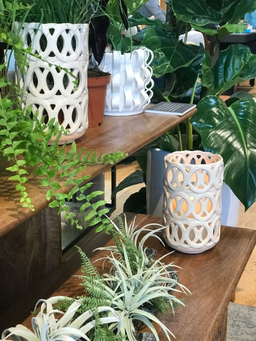 Plants & Flowers by Verde Alcove seen at west elm, Emeryville - Plants