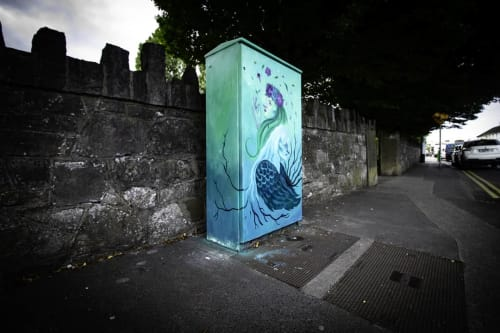 Street Murals by Rebecca Deegan seen at Saint Agnes Road, Dublin - Brìghde & The Cailleach