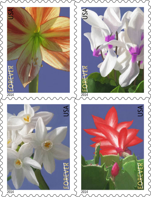 Art & Wall Decor by William Low seen at United States - Winter Flower for USPS Forever® Stamps