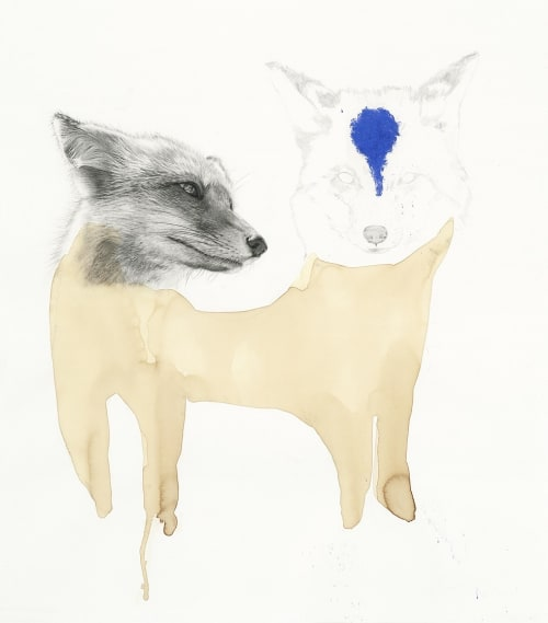 Fox Drawing | Paintings by Meagan Donegan