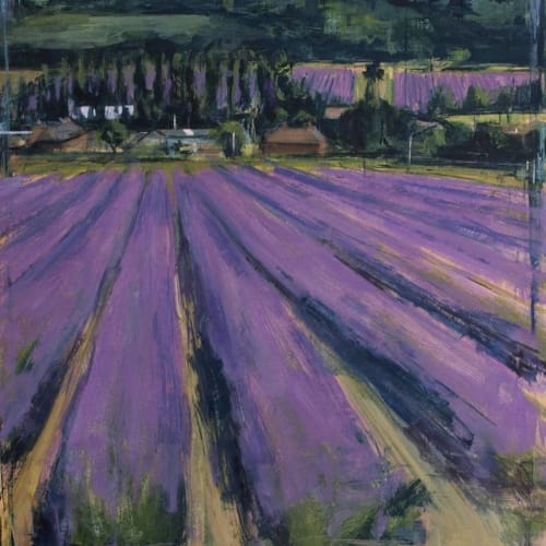 Paintings by Tom Voyce seen at Private Residence, Whiritoa - Lavender Fields