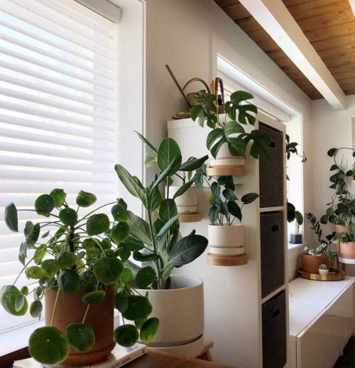 """Interior Design by LBE Design seen at Private Residence, Encinitas - Round Two 8"""" Planters by LBE Design"""