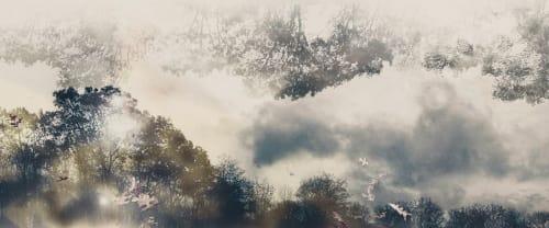Elena Lyakir - Photography and Art