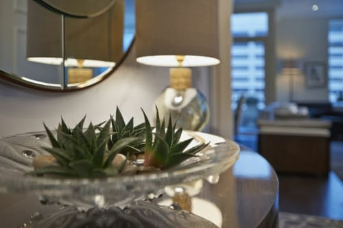 Art & Wall Decor by Lalique seen at The Ritz-Carlton Residences, Chicago, Chicago - Bowl Display