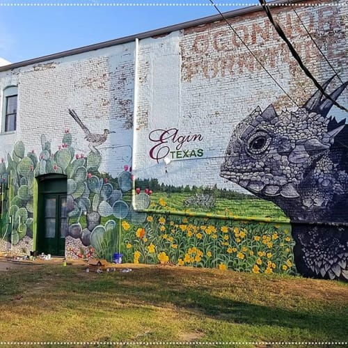 Sarah J Blankenship - Murals and Street Murals