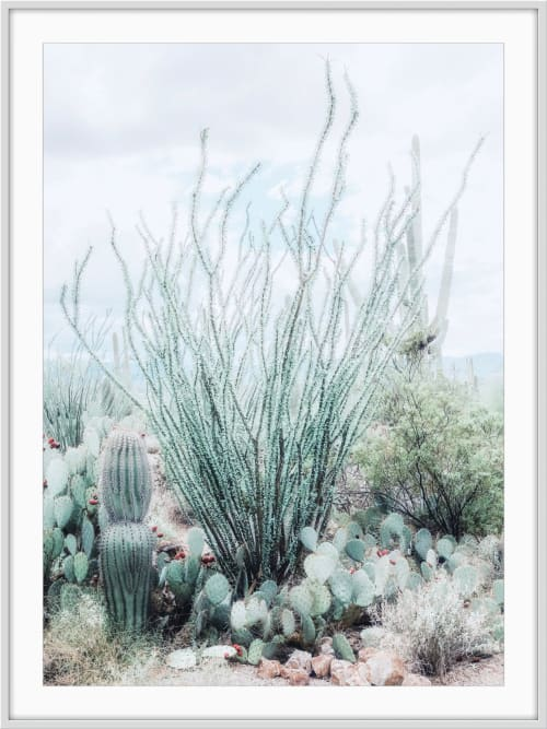 Desert Garden - Turquoise   Photography by Kristin Hart Studios