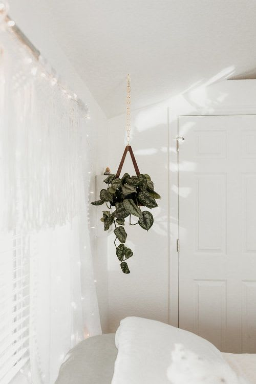 Vases & Vessels by Object Modern seen at Terra LaRock's Home - Wooden Plant Hanger