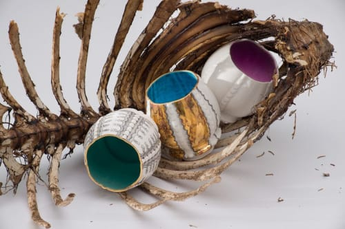 "Photography by Melanie Sherman Ceramics & Jewelry seen at Crossroads Hotel, Kansas City - ""Cups in Baby Lamb Carcass"""