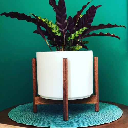 Vases & Vessels by LBE Design seen at ornamental plant boutique, Oceanside - The Eight w/ Stand Planter