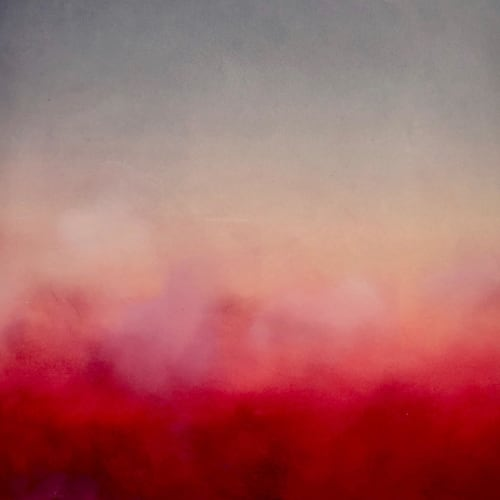 Ericka Wolf Art - Paintings and Art