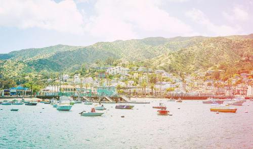 Southern Islands   Photography by Kara Suhey Print Shop