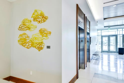 Art & Wall Decor by Jane Guthridge seen at Texas State University, Health Professions, San Marcos - Light Forms