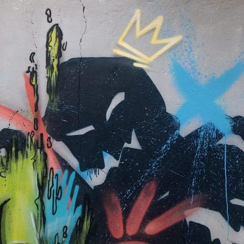 Street Murals by PHNSK seen at Private Residence, Cova da Piedade - Street Mural