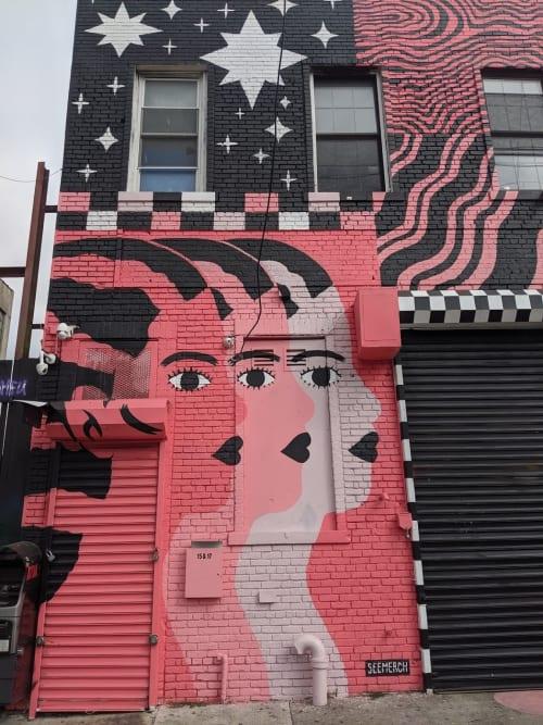 Street Murals by Claire Merchlinsky seen at The Gradient, Brooklyn - Seemerch