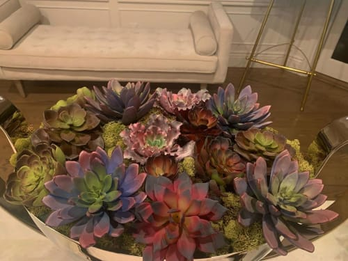 Floral Arrangements by Fleurina Designs seen at Private Residence, Los Gatos - Custom Succulent Arrangements