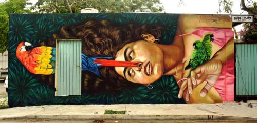 Street Murals by Juan iesari seen at Playa del Carmen, Cancún - Abril