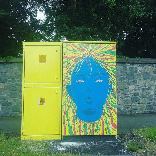 Street Murals by Brandon O'Rourke seen at Malahide Road - The Girl With Kaleidoscope Eyes
